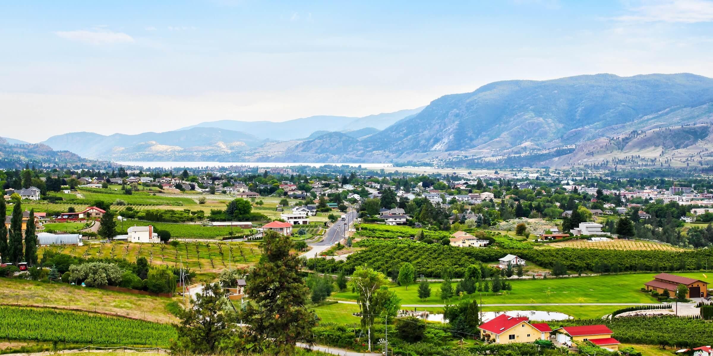 In Kanada wird direkt am Wasser Wein angebaut