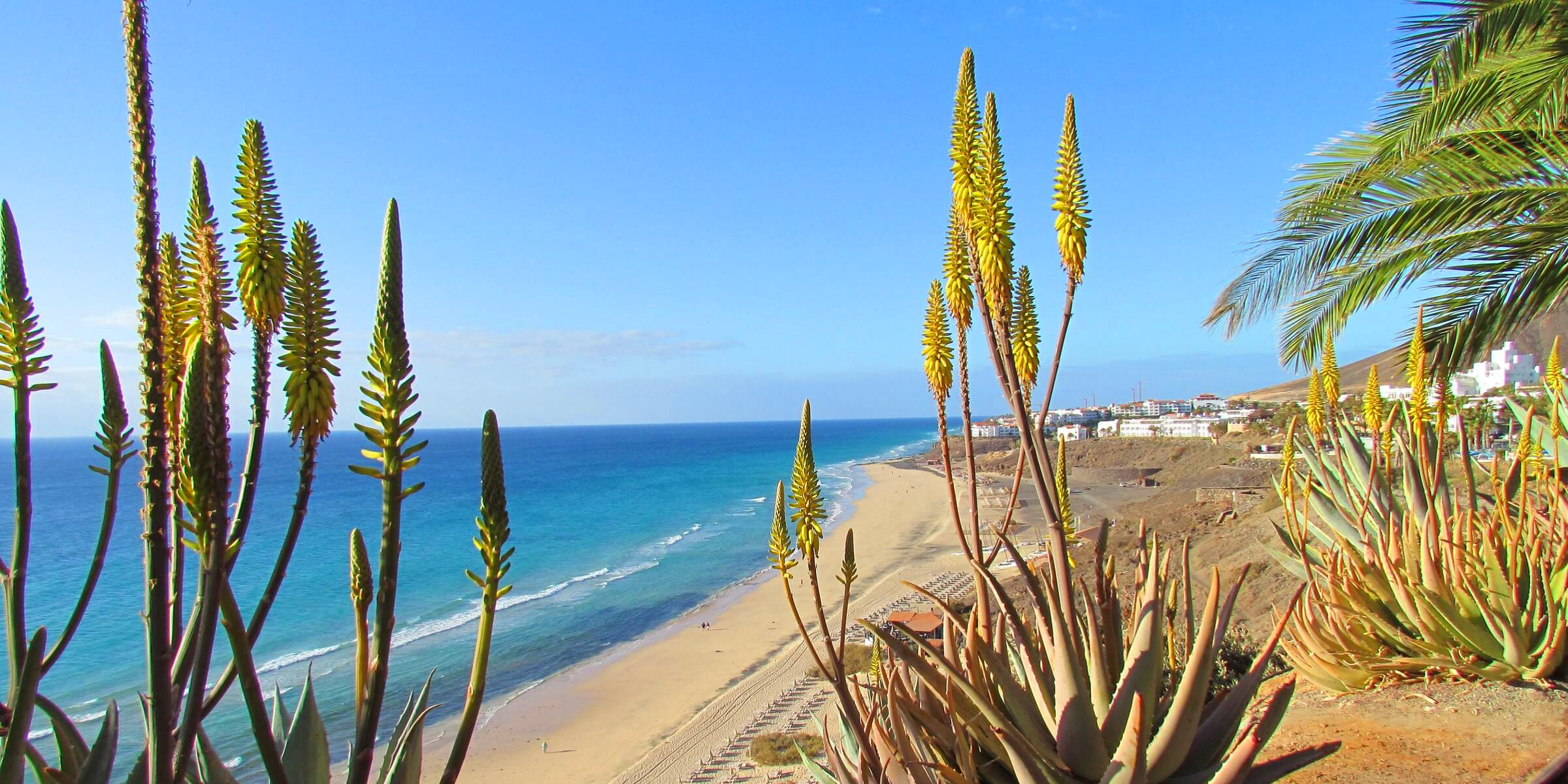 Strandabschnitt auf Fuerteventura