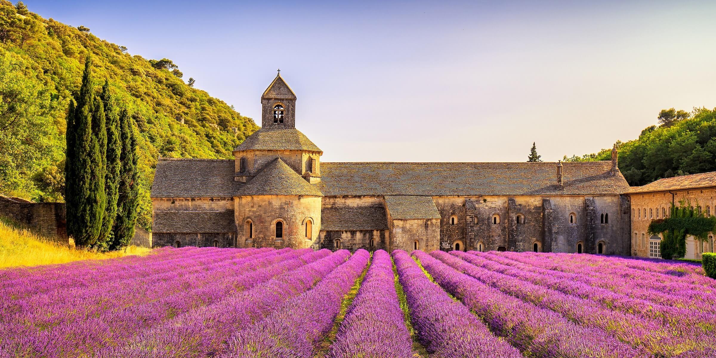 Das Kloster von Senanque mit typischem Lavendelfeld im Vordergrund