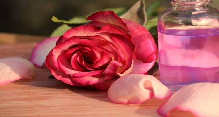 Im Oman wird feinstes Rosenwasser hergestellt