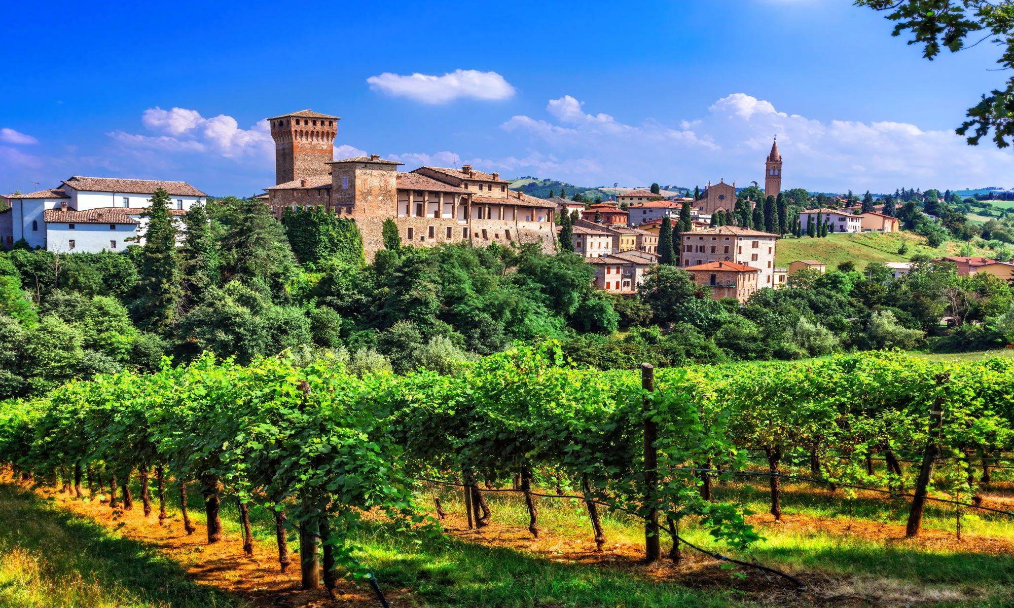 Weinberge in Bologna während einer Reise fuer Singles