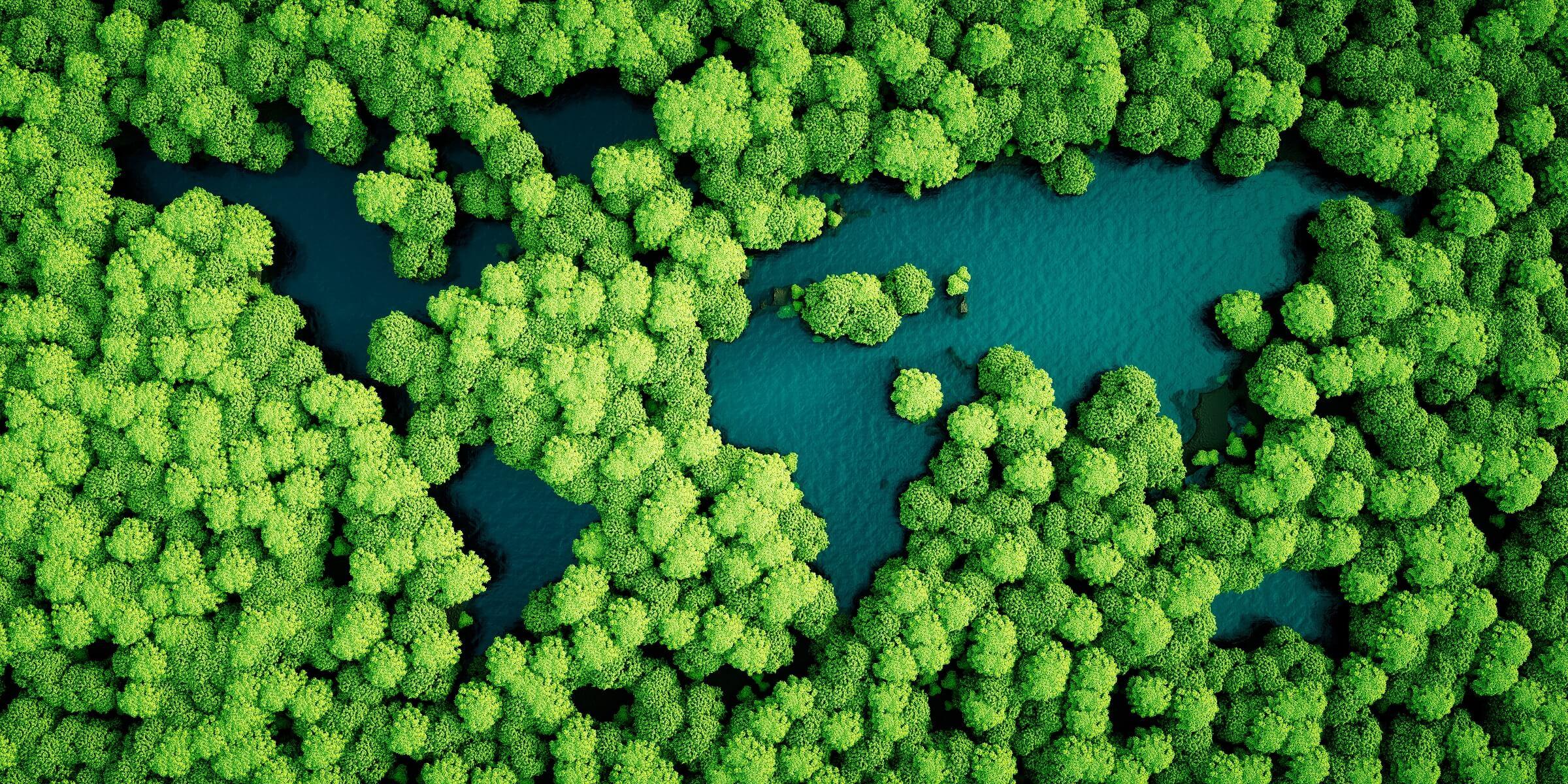 Umweltbewusstes reisen