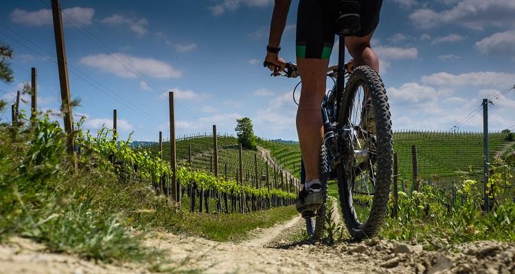 E-Biking Tour durch Piemont in Italien