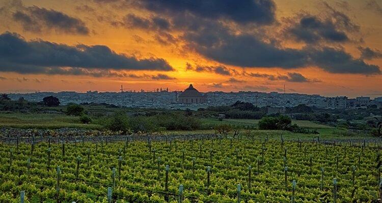 Adamare Singlereise auf Malta zu Silvester Weinverkostung
