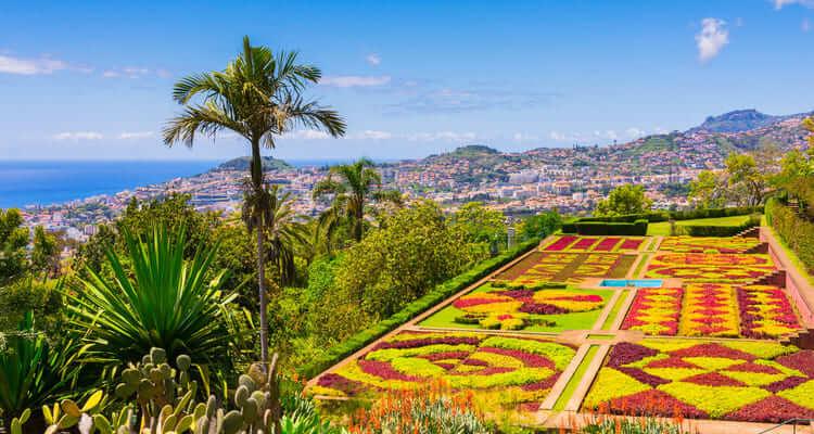 Singlereise Madeira - Botanischer Garten Funchal