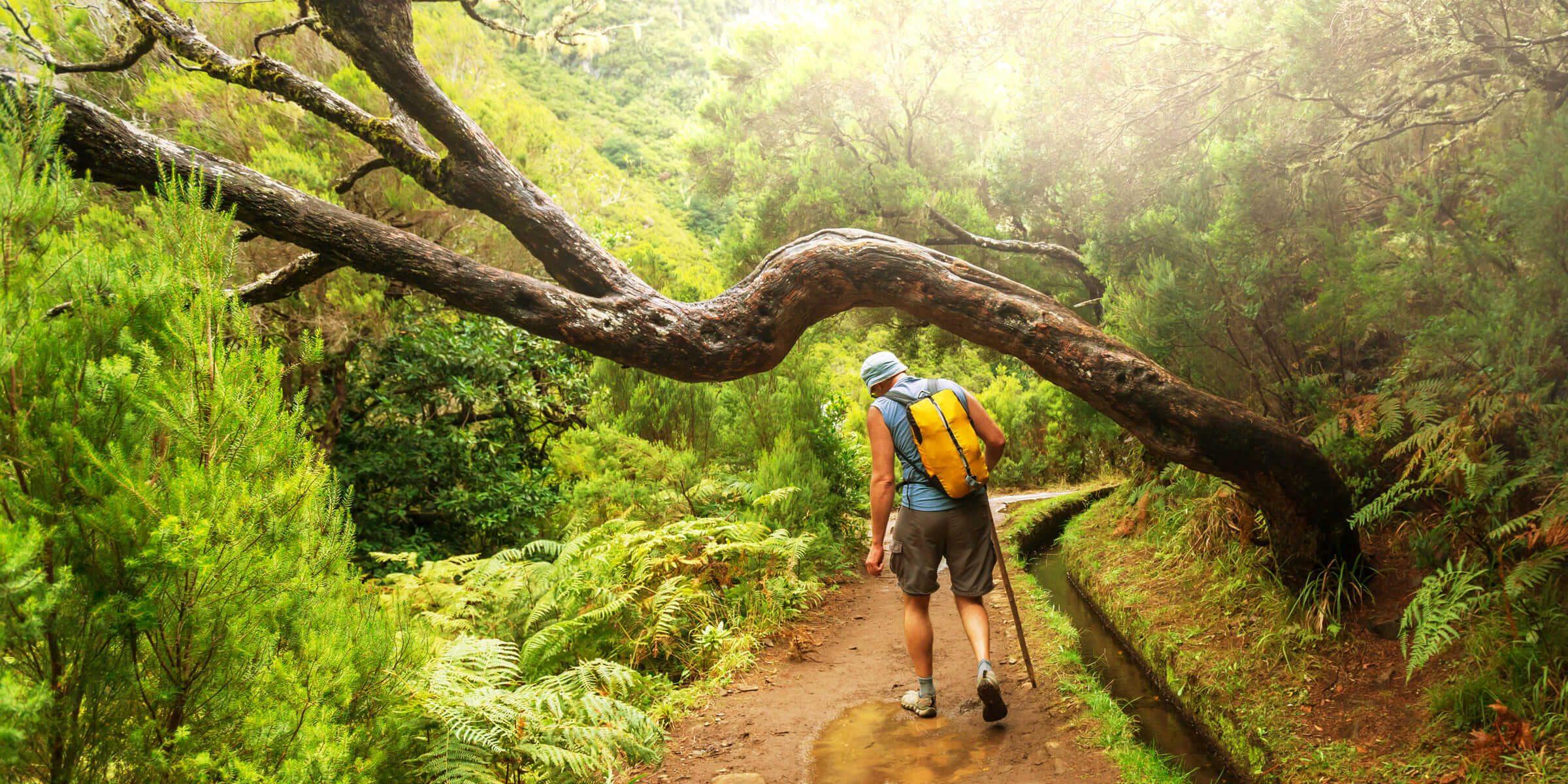 Singlereise Madeira - Levada Wanderung
