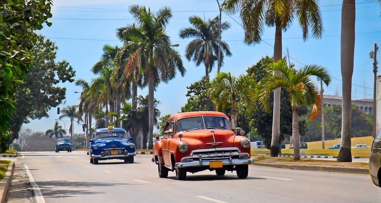 Singlereise nach Kuba - Oldtimer unterwegs auf einer Allee