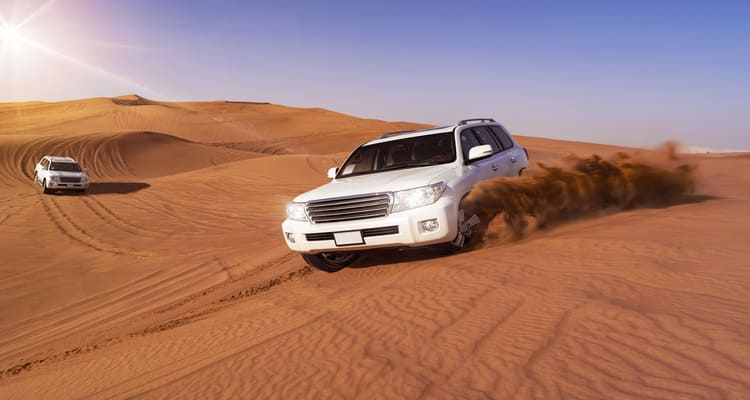 Singlereise nach Abu Dhabi - Dune Bashing