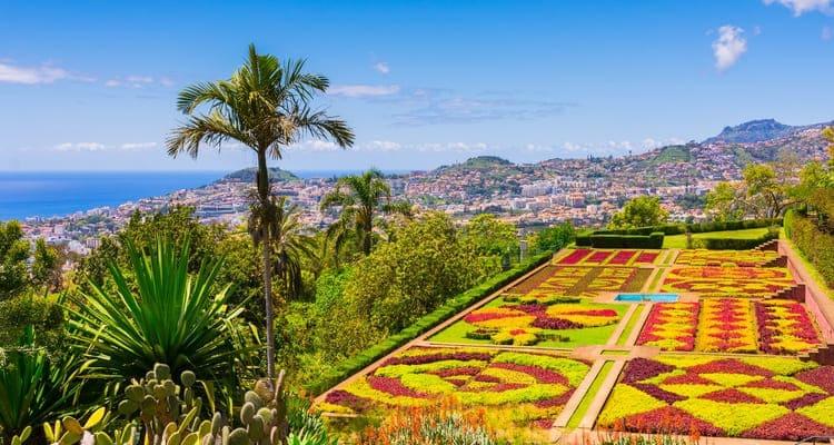 Singlereise nach Madeira - Botanischer Garten