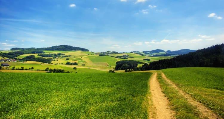 Singlereise nach Bad Leonfelden - grüne Landschaft