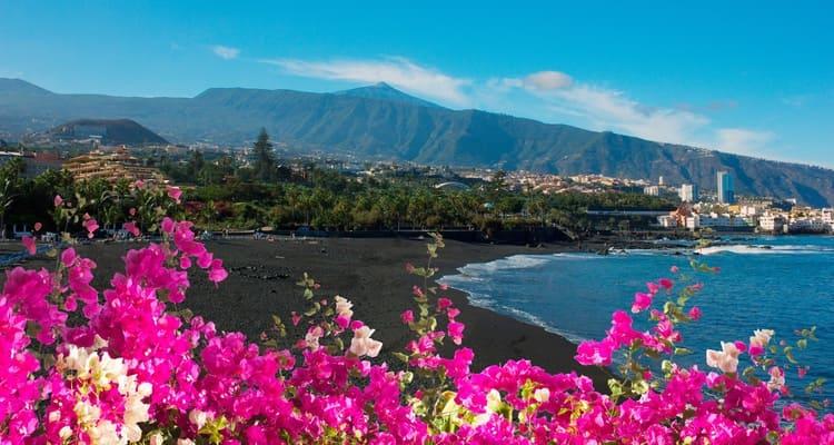 Singlereise nach Teneriffa - Puerto Cruz Blumen